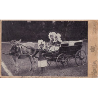 Békés Gy[ula]: gróf Almásy Dénes (1863-1940) gyermekei